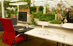 Un air de vacances au bureau ? Customisez votre espace de travail !