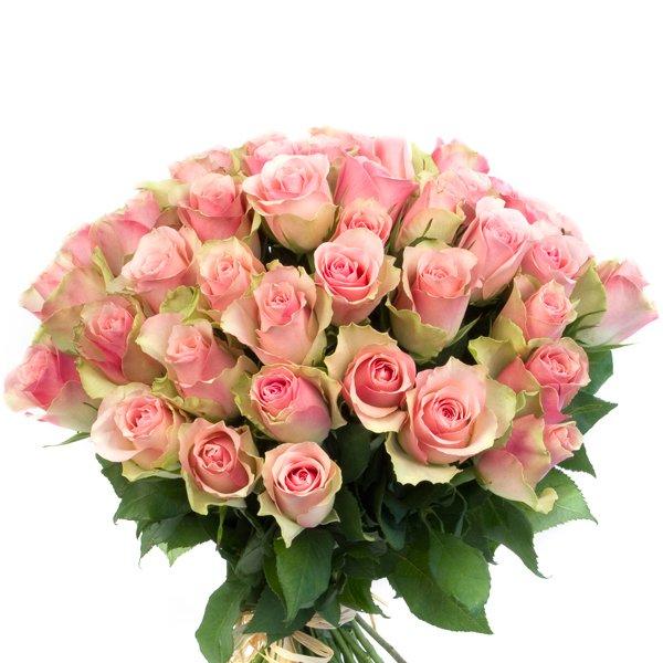 Bouquet de fleurs blanches signification - Signification rose rose ...