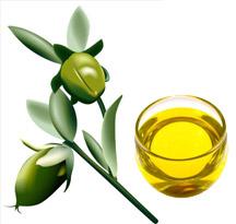 huile végétale bio